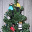 Trekmas Tree
