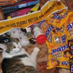 Halloween With Snickers